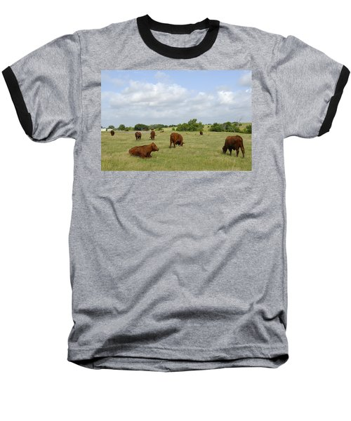 Baseball T-Shirt featuring the photograph Red Angus Cattle by Charles Beeler