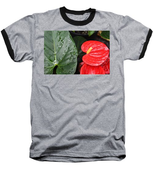 Red Anthurium Flower Baseball T-Shirt