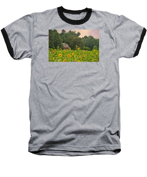 Red Barn Among The Sunflowers Baseball T-Shirt by Sandi OReilly