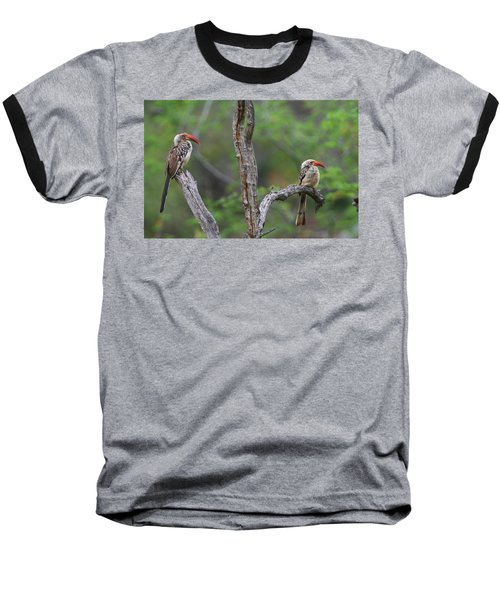 Red-billed Hornbills Baseball T-Shirt