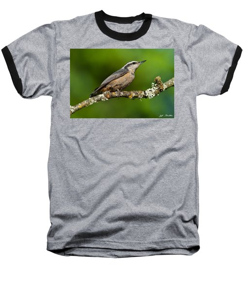 Red Breasted Nuthatch In A Tree Baseball T-Shirt