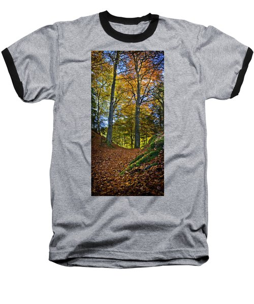 Red Carpet In Reelig Glen During Autumn Baseball T-Shirt