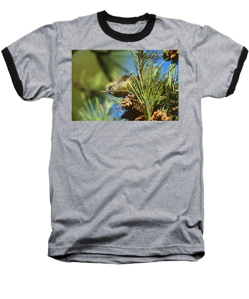 Red Crossbill Eating Cone Seeds Baseball T-Shirt