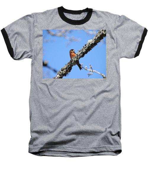 Red Crossbill Finch Baseball T-Shirt