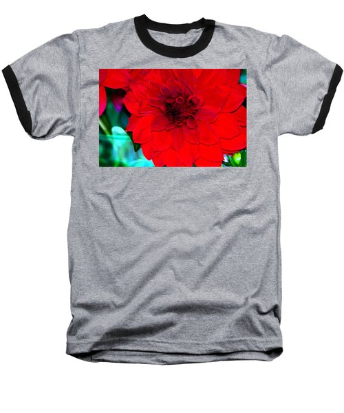 Baseball T-Shirt featuring the photograph Red Dahlia by Lehua Pekelo-Stearns