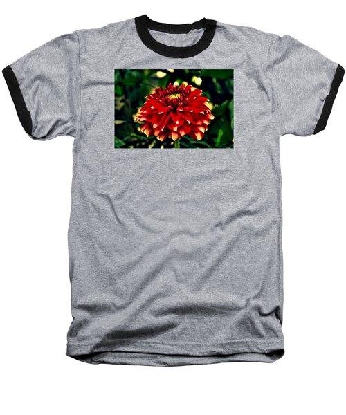 Red Dahlia Baseball T-Shirt by Salman Ravish