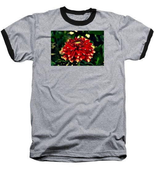 Red Dahlia Baseball T-Shirt