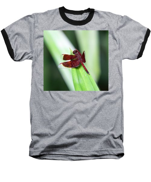 Baseball T-Shirt featuring the photograph Red Dragon by Shoal Hollingsworth