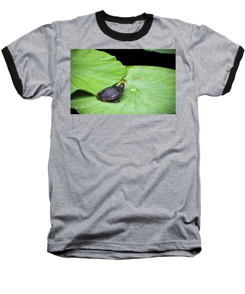 Red-eared Slider Baseball T-Shirt by Greg Reed