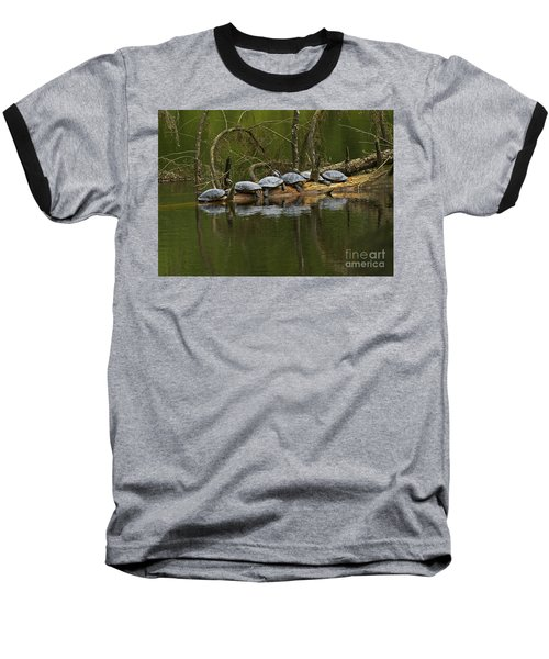Red-eared Slider Turtles Baseball T-Shirt