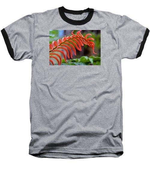 Autumn Fern In Hawaii Baseball T-Shirt by Venetia Featherstone-Witty