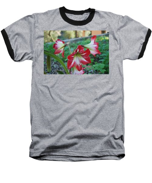 Red Flower 1 Baseball T-Shirt by George Katechis