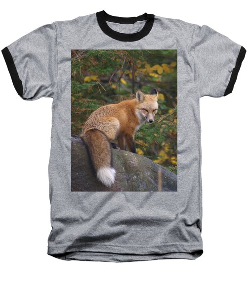 Baseball T-Shirt featuring the photograph Red Fox by James Peterson