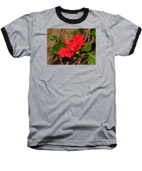 Red Hibiscus Flower Baseball T-Shirt