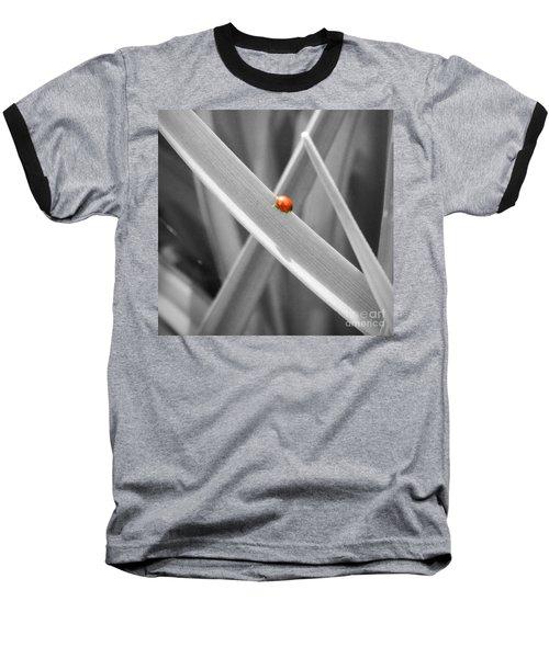 Red Ladybird Baseball T-Shirt