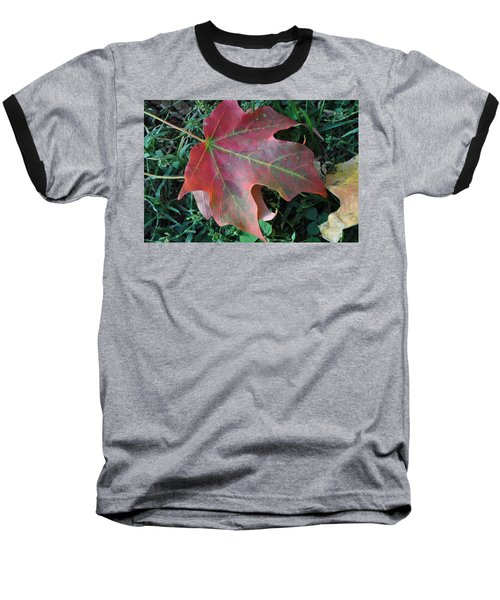 Red Leaf Baseball T-Shirt