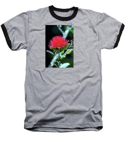 Red Lehua  Kawaiko'olihilihiokalikolehua Baseball T-Shirt