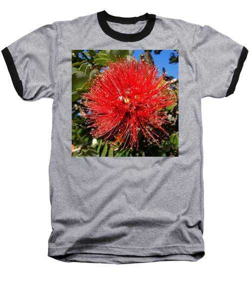 Red Lehua Baseball T-Shirt by Pamela Walton