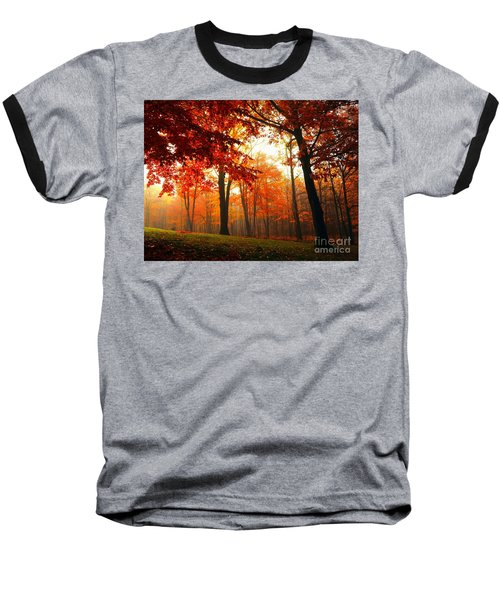 Red Maple Forest Baseball T-Shirt by Terri Gostola