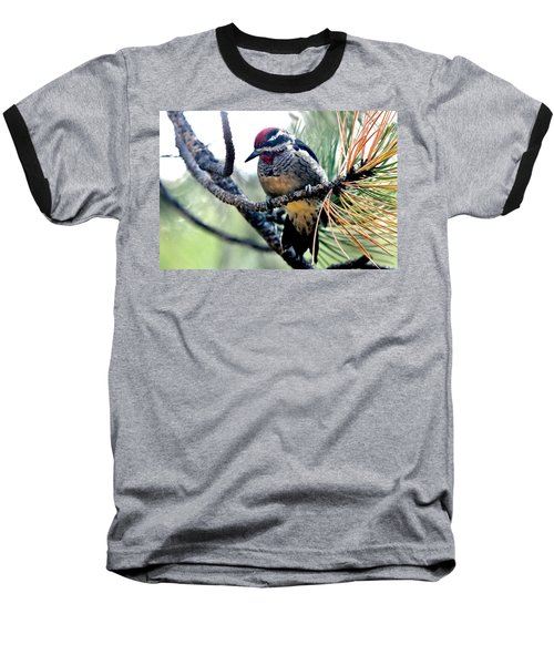 Red-naped Sapsucker On Pine Tree Baseball T-Shirt by Marilyn Burton