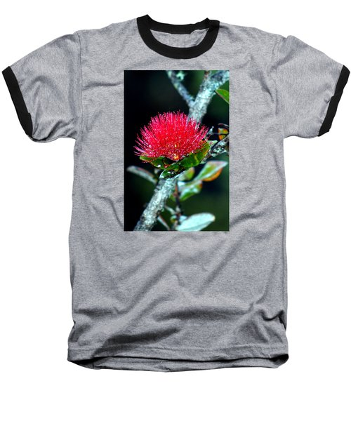 Baseball T-Shirt featuring the photograph Red Ohia Lehua In Hawaii Volcano Mist by Lehua Pekelo-Stearns