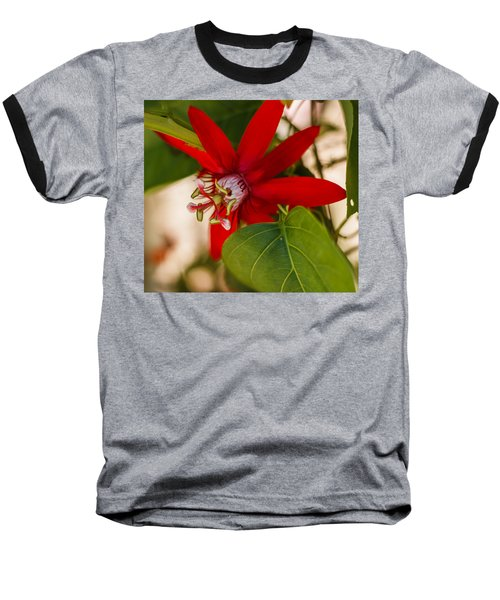 Baseball T-Shirt featuring the photograph Red Passion Flower by Jane Luxton
