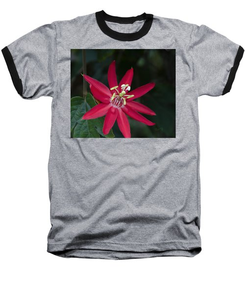 Red Passion Flower Baseball T-Shirt