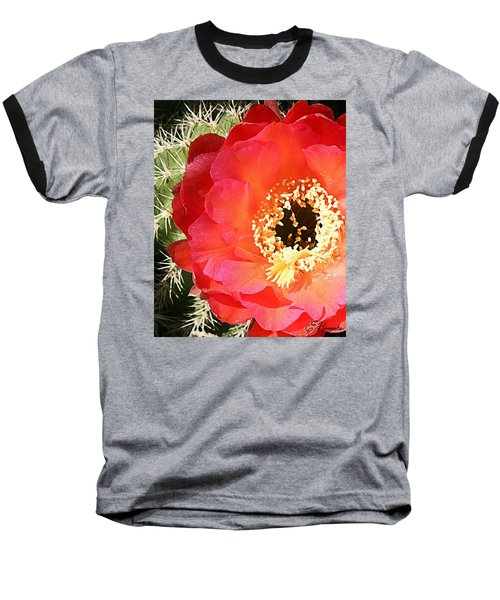 Red Prickly Pear Blossom Baseball T-Shirt by Ellen Henneke