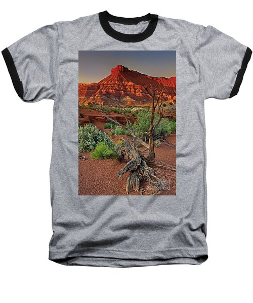 Baseball T-Shirt featuring the photograph Red Rock Butte And Juniper Snag Paria Canyon Utah by Dave Welling