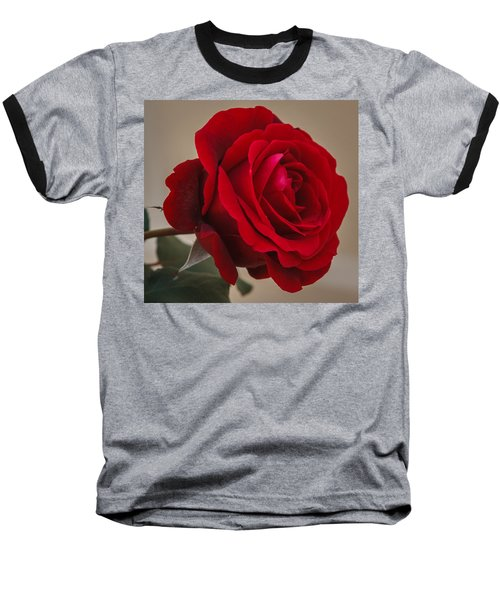 Red Rose Baseball T-Shirt by Jane Luxton