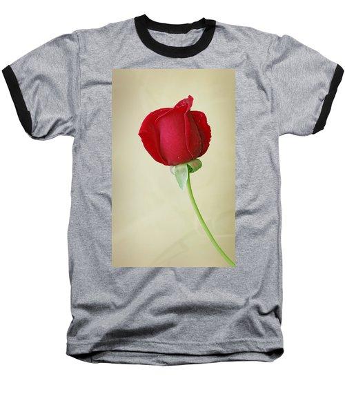 Red Rose On White Baseball T-Shirt by Sandy Keeton