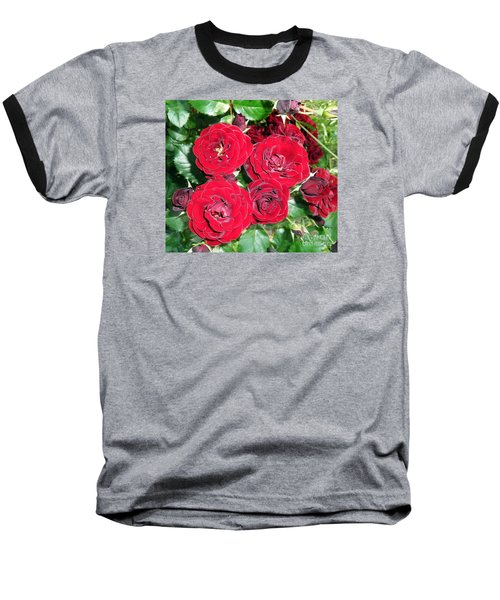 Baseball T-Shirt featuring the photograph Red Roses by Vesna Martinjak