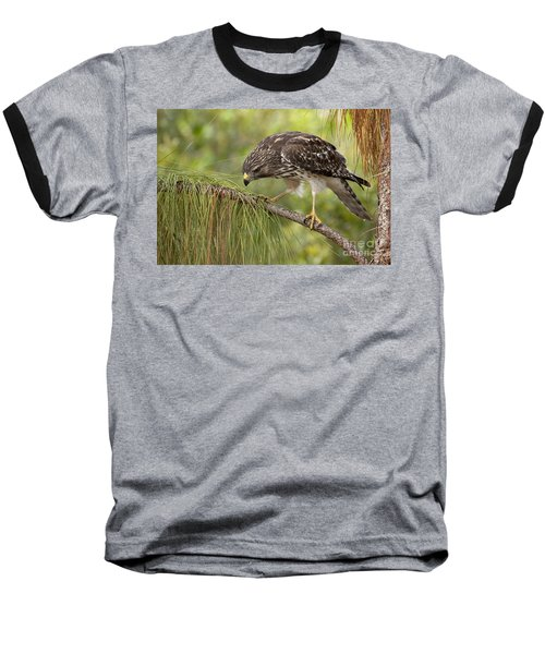 Red Shouldered Hawk Photo Baseball T-Shirt
