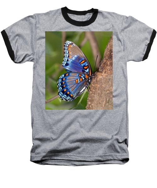 Red Spotted Purple Butterfly Baseball T-Shirt