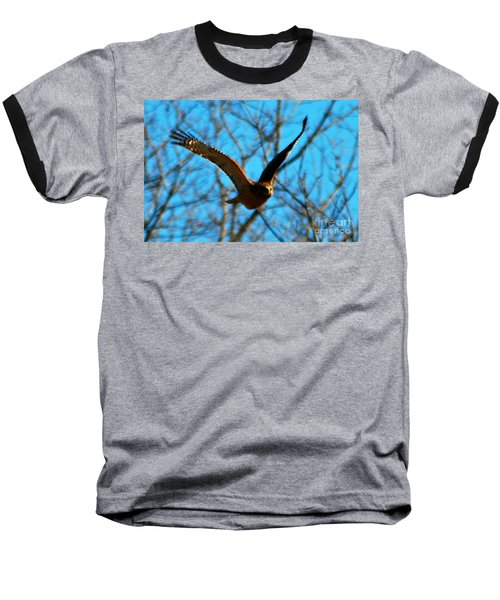 Baseball T-Shirt featuring the photograph Red Tail Hawk In Flight by Peggy Franz