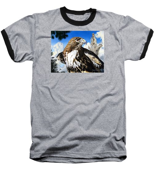 Da141 Red Tailed Hawk By Daniel Adams Baseball T-Shirt