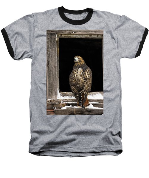 Red Tailed Baseball T-Shirt