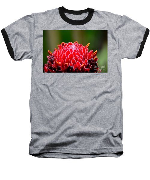 Red Torch Ginger Flower Head From Tropics Singapore Baseball T-Shirt by Imran Ahmed