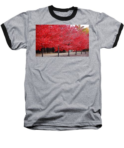 Red Tree Line Baseball T-Shirt
