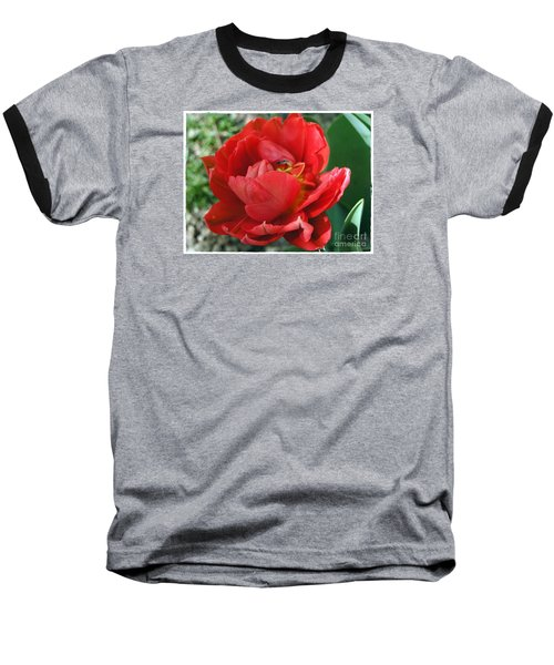 Baseball T-Shirt featuring the photograph Red Tulip by Vesna Martinjak