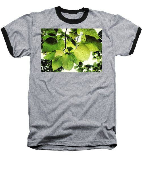 Catalpa Branch Baseball T-Shirt