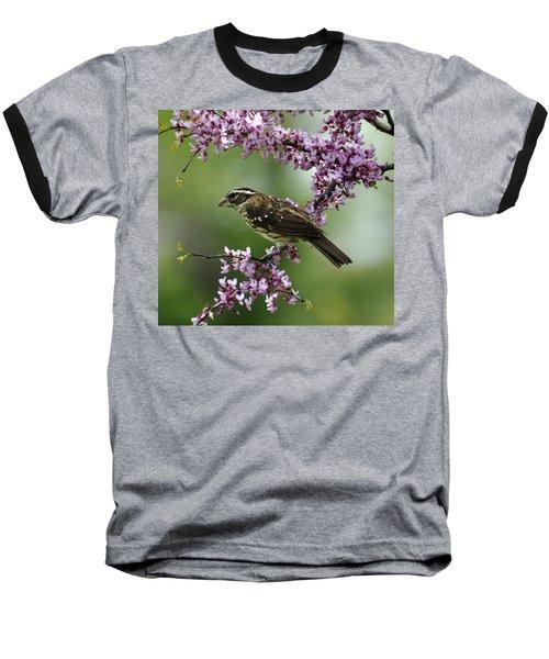 Redbud With Grosbeak Baseball T-Shirt