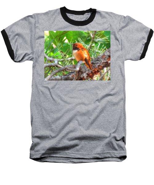 Redheaded Hummingbird II Baseball T-Shirt