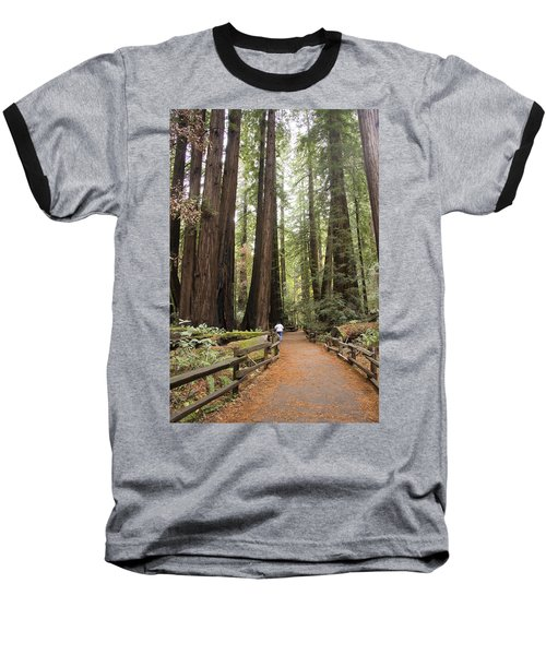 Redwood Trees Baseball T-Shirt