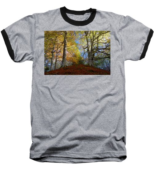 Reelig Forest  Baseball T-Shirt
