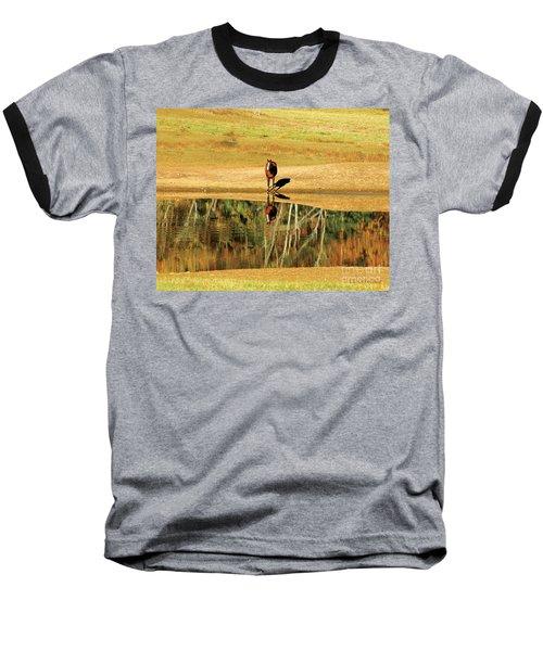Reflection Baseball T-Shirt by Carol Lynn Coronios