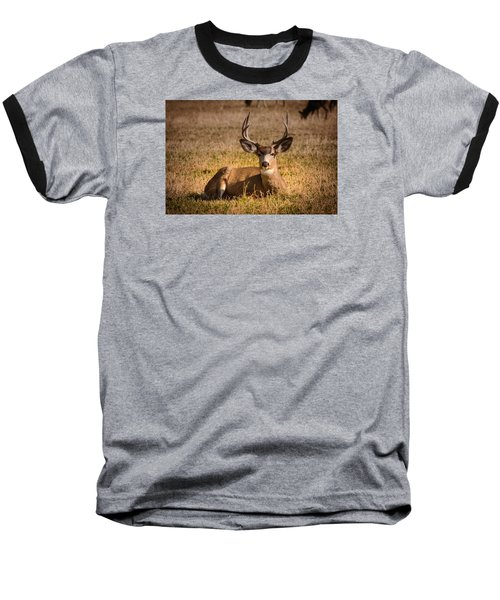 Baseball T-Shirt featuring the photograph Relaxing Buck by Janis Knight