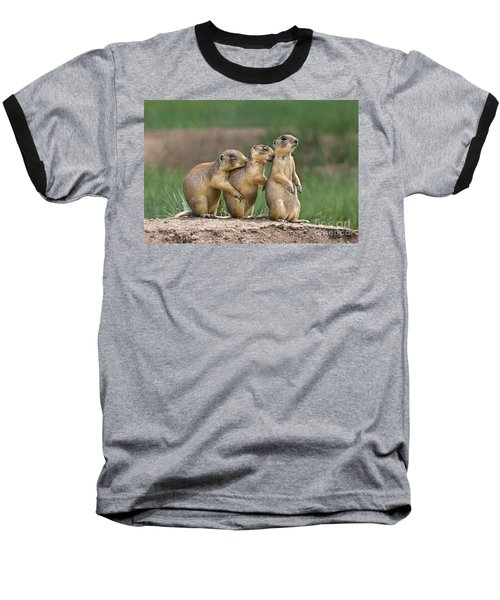 Baseball T-Shirt featuring the photograph Relaxing Utah Prairie Dogs Cynomys Parvidens Wild Utah by Dave Welling