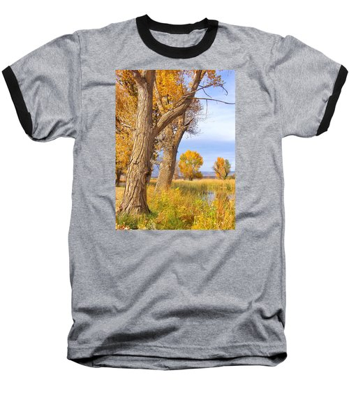 Remembering Autumn Baseball T-Shirt by Marilyn Diaz