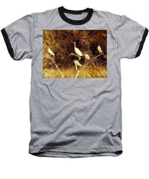 Resting Flock Sepia Baseball T-Shirt